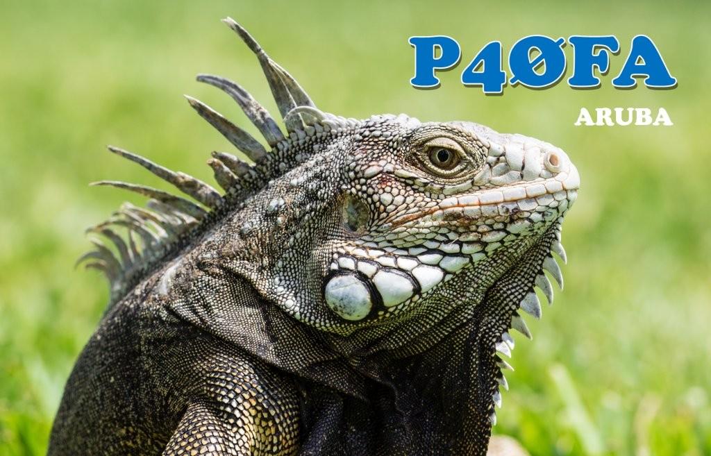 p40fa-1a